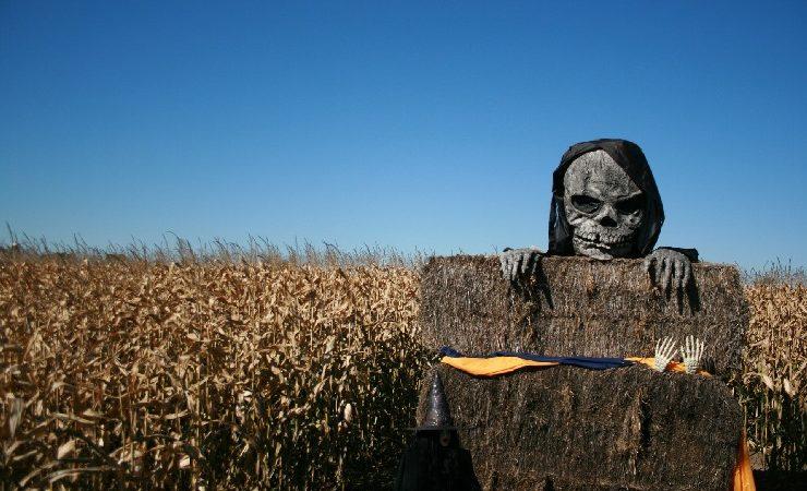 Denkunfähige Fakepower-Ideologen gleichen Zombies kurz vor ihrem Tod
